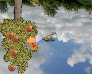 wereldopzijnkopmetboom